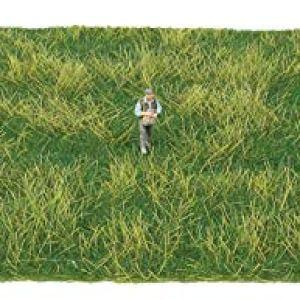 Tear and Plant Grass Mat 8 5/8 x 7 7/8 22 x 20 Centimeters Lowland Meadow 41WOEN11j2L