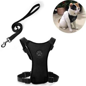 NEEDOON Cat Leash and Harness Adjustable Small Dog Harness for Walking Escape Proof, Collar Breathable Kitten Puppy Walking Jackets, No Pull No Choke Easy Training…