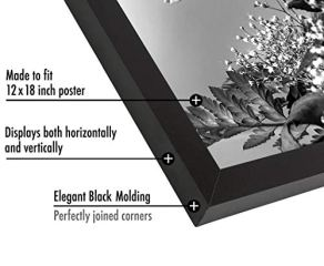 Americanflat-12x18-Poster-Frame-Black