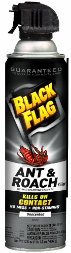 Black Flag 11066 Ant and Roach Killer Crack and Crevice Aerosol, Unscented, 17.5-Ounce