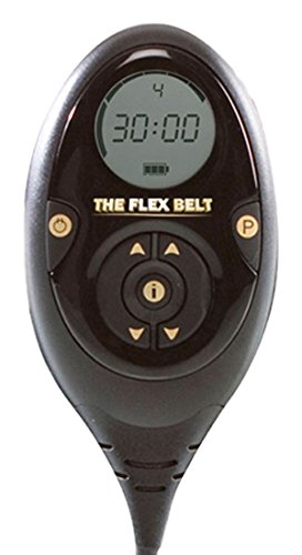 The Flex Belt Replacement Controller & Charger (Flex Belt Sold Separately)