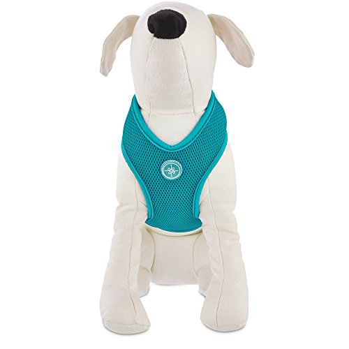 Good2Go Teal Mesh Dog Harness, XS, X-Small