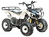 TAO TAO - Brand New 4 Wheeler fully automatic engine with REVERSE - ATA125D