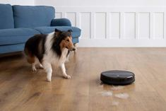 Roborock-Robot-Vacuum-and-Mop-2000Pa-Strong-Suction-App-Control-and-Scheduling-Route-Planning-Handles-Hard-Floors-and-Carpets-Ideal-for-Homes-with-Pets