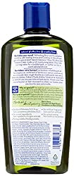 Kiss My Face Active Athletic Birch & Eucalyptus Reviving Moisturizing Shower Gel, Bath and Body Wash, 16 oz (Pack of 3)  Image 1