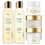 Skin Care Set, Travel Size Toiletries, Gentle Foaming Cleanser Face Wash, Clarifying Facial Toner, Face Moisturizer, Dead Sea Mud Face Mask, Skin Care Products Deluxe Facial Kit By Deluvia