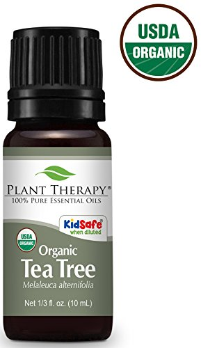Plant Therapy Tea Tree Oil Organic
