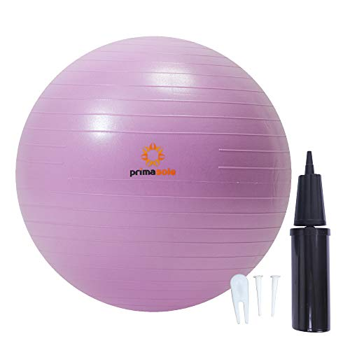 rimasole Exercise Ball