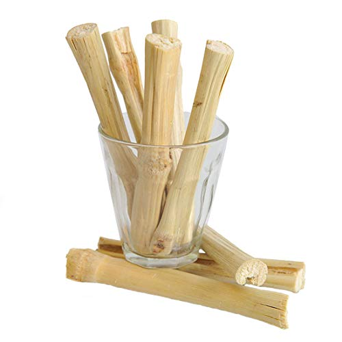Bwogue 100g Pet Snacks Sweet Bamboo Chew Toy