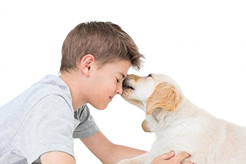Wallmonkeys WM359802 Puppy Licking Boy over White Background Peel and Stick Wall Decals (18 in W x 12 in H)