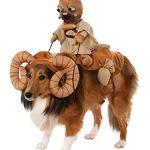 Star-Wars-Pet-Bantha-Rider-Costume