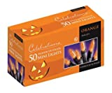 Celebrations Orange Mini Light Set V34750-71