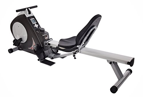 Stamina Exercise Bike/Rower