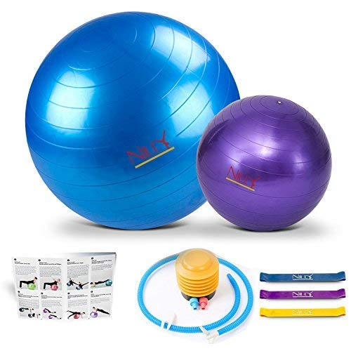 Yoga Ball Set - 2 Exercise Birth Balls ( Anti-Burst ) - 65 and 30 Centimeters Bundle with Durable Resistance Bands , Pump and a Printed User Manual