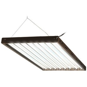 Agrobrite T5 florescent grow lights