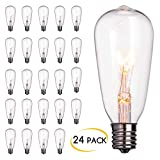24-Pack Edison Replacement Light Bulbs,7-watt E17 Screw Base ST40 Replacement Clear Glass Light Bulbs for Outdoor Patio ST40 String Lights, Warm White