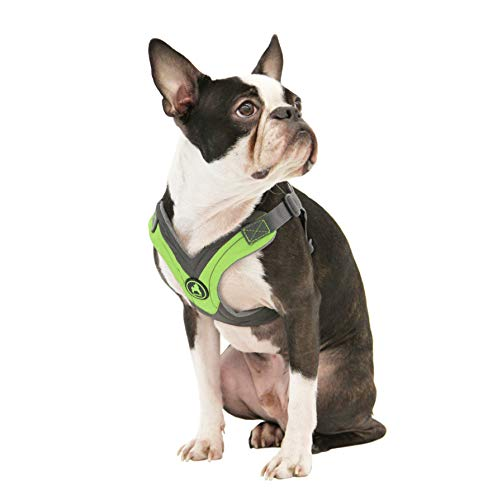 Gooby - Trekking Harness, Small Dog Fleece Lined Harness with Memory Foam Padding, Green, Small