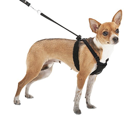 SPORN No-Pull  Dog Harness, Mesh, Black, Extra Small