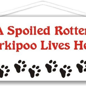 A Spoiled Rotten Yorkipoo Lives Here 6