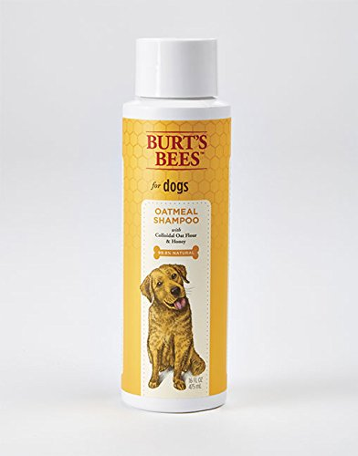 Burt's Bees for Dogs All-Natural Oatmeal Shampoo with Colloidal Oat Flour and Honey | Best Oatmeal Shampoo For All Dogs And Puppies With Itchy Skin