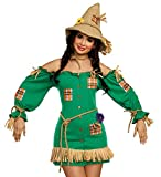 Dreamgirl Women's Storybook Scarecrow Costume Dress, Green, Medium