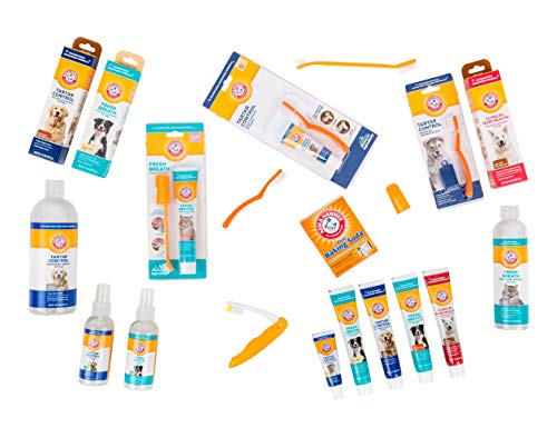 Arm & Hammer Tartar Control Dental Solutions for Dogs   Dog Toothpaste, Toothbrush, Water Additive & Dental Sprays   Vital to Your Dog's Health 7