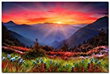 Sunrise - Mountains Spring Flowers Nature Art Silk Wall Poster 24x36 inch
