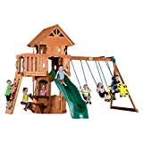 Backyard Discovery Woodland All Cedar Wood Playset Swing Set