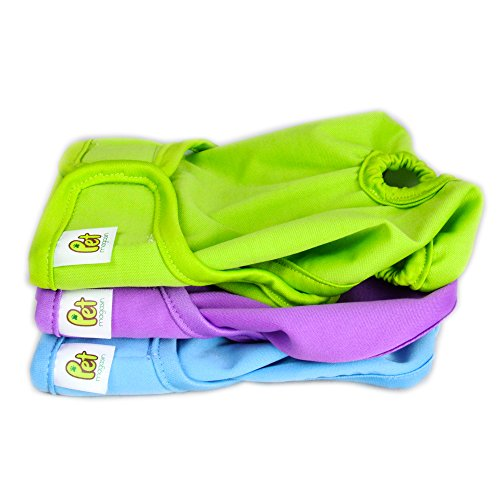 Pet Magasin Reusable Female Dog Diapers Panties, 3-Pack, Blue Green and Purple, Small