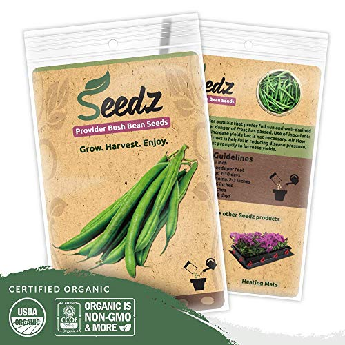 Organic Green Bean Seeds (APPR. 125) Green Bean - Heirloom Vegetable Seeds - Certified Organic, Non-GMO, Non Hybrid - USA