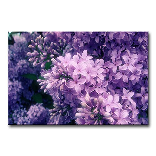 Inspiring cute and trendy purple wall art home wall art for Purple wall art