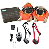 AGPtek 2 Dogs 1000 Yards Long Distance Backlit Remote Contorl Pet Dog Shock Vibrate Training Collar Waterproof Rechargeable(Please note that every time you pull out the batteries,you need to match code again)