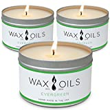 Wax and Oils Soy Wax Aromatherapy Scented Candles (Evergreen) 8 Ounces. 3 Pack