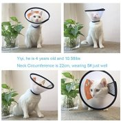 Depets-Adjustable-Recovery-Pet-Cone-E-Collar-for-Cats-Puppy-Rabbit-Plastic-Elizabeth-Protective-Collar-Anti-Bite-Lick-Wound-Healing-Safety-Practical-Neck-Cover-Small-Size-6-Medium-Size-5