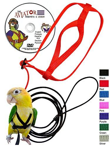 The AVIATOR Pet Bird Harness and Leash 1
