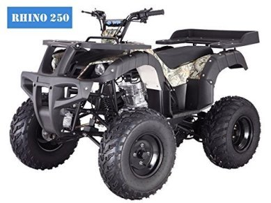 BRAND-New-Adult-Size-250-Adult-Size-ATV-with-standard-manual-clutch-and-reverse-Choose-your-color