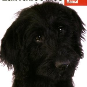 Labradoodles (Complete Pet Owner's Manual) 11
