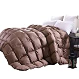 C&W Luxurious Queen Size Siberian Goose Down Comforter,All Seasons Down Comforter Queen,750 Fill Power,50oz Fill Weight,Brown Solid