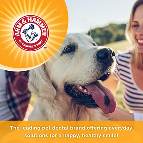 Arm & Hammer Tartar Control Dental Solutions for Dogs   Dog Toothpaste, Toothbrush, Water Additive & Dental Sprays   Vital to Your Dog's Health 5