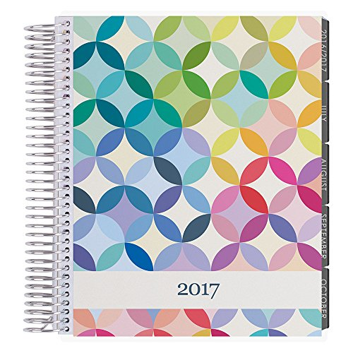 Erin Condren 12 Month 2017 Lifeplanner, Midcentury Circles-Colorful Hourly, Neutral Interior (AMA-12M 2017 12)