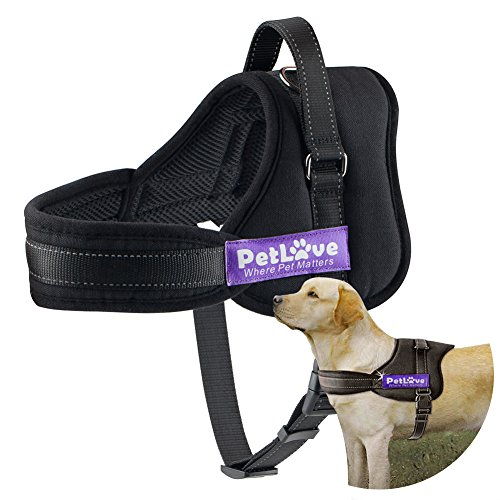 PetLove Dog Harness, Soft Leash Padded No Pull Dog Harness with All Kinds of Size 1