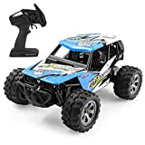 FITMAKER RC Cars, All Terrain Remote Control High-Speed Offroad 2.4Ghz 2WD Remote Control Monster Truck, Best Gift for Kids and Adults Blue