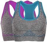 Vermilion Bird Women's Seamless Sports Bra High Impact Pocket Yoga Bras L 2-Pack