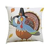 Gotd Turkey Decorations Decor Throw Pillow Case Sofa Waist Throw Cushion Cover Home Decor Thanksgiving Party Square 45cm x 45cm 18inch x 18inch (D)