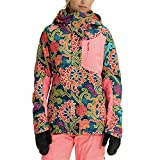 Burton Women's AK Gore-Tex Embark Jacket, Luca Print, Small