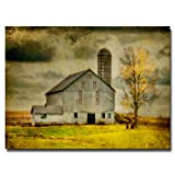 Old Barn on Stormy Afternoon by Lois Bryan, 16x24-Inch Canvas Wall Art