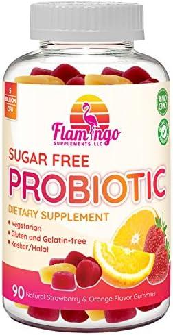 Probiotic Gummies Sugar Free - 5 Billion CFU, Non GMO, Vegetarian (NO Gelatin or Gluten) and Kosher. Probiotics for Women, Kids, and Men. Digestive and Immune Health | 90 Count 1
