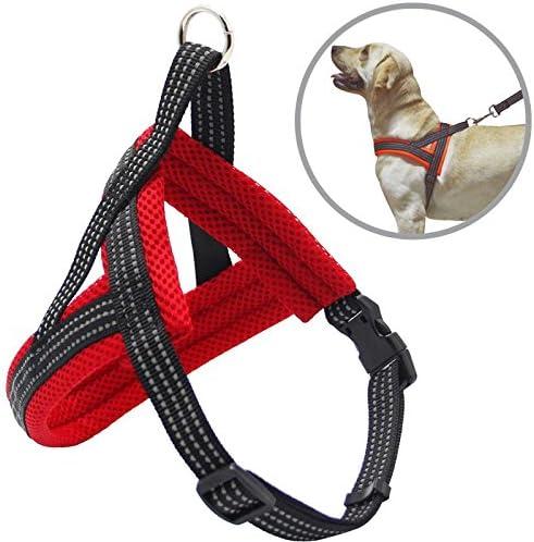 Arnés Correa para Perros Mascotas Collar Ajustable 4 Tamaños Colores para Elegir para Perro Pequeño Mediano y Grande (S, Rojo) BPS-3881R