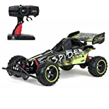 New Bright F/F 9.6V Baja Extreme Spider Buggy RC Car (1:6 Scale)