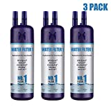 HEIOWQP 9081 Water Filter Replacement, Compatible for Kenmore 46/9081 9081 46/9930 9930 3 Pack